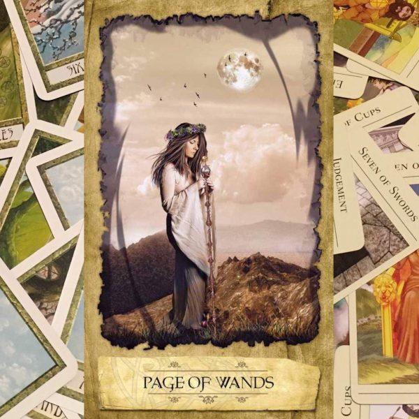 Ý nghĩa lá bài Page of Wands